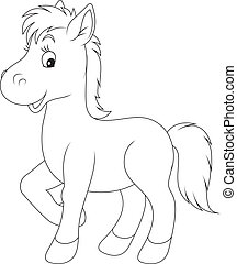 Foal - Little foal, black and white outline illustrations