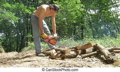 woodcutter - worker with chainsaw in the woods