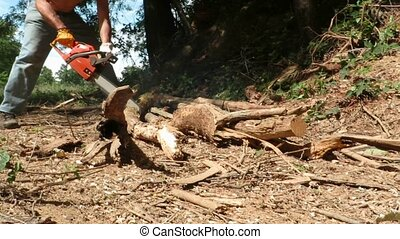 chainsaw - worker with chainsaw in the woods