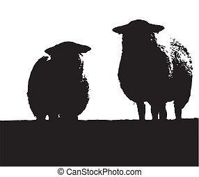 Two Welsh Sheep