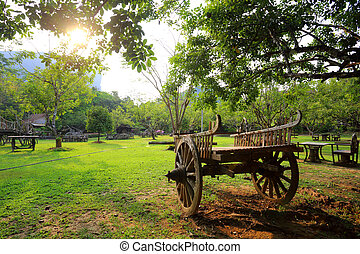 Old Wooden Cart in garden