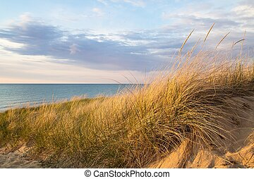 Great Lakes Sand Dune - Sand dune and sea oats with blue...