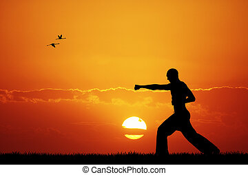 judo at sunset - Illustration of judo at sunset