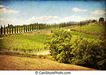 Montalcino - The landscape of the Tuscany Italy