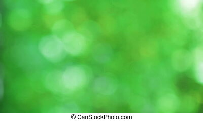 Defocused abstract nature background