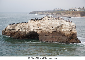 Natural Bridges State Park Santa C - Natural Bridges State...
