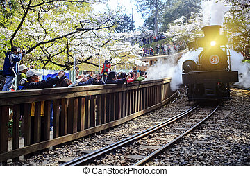 Alishan Forest train for adv or others purpose use Editional...