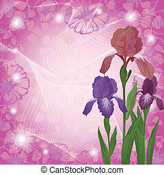 Flowers iris and ipomoea contours