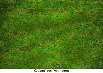 High Resolution Grass Texture. Grassy Background.