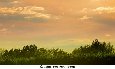 Two woman running at sunset - Two woman silhouette running...