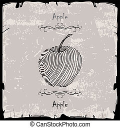 Apple illustration on gray background with black frame