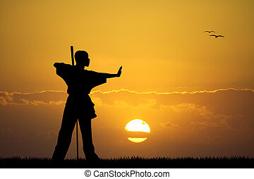 kung fu at sunset - illustration of kung fu at sunset