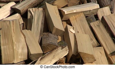 chopped fresh firewood in farm