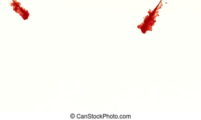 Blood streaming into water on white background in slow...