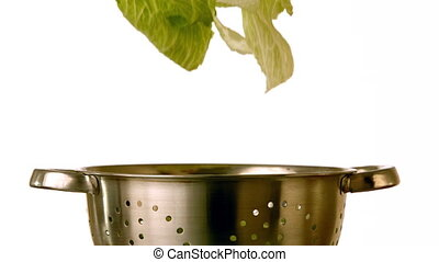 Lettuce falling into colander on white background in slow...