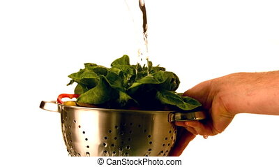 Water pouring over salad in colander held by hand in slow...