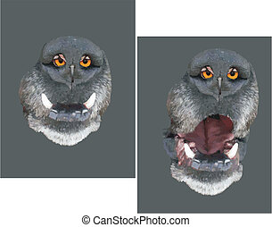 Owl face dog... - Owl face on the nose of my dog. Using the...