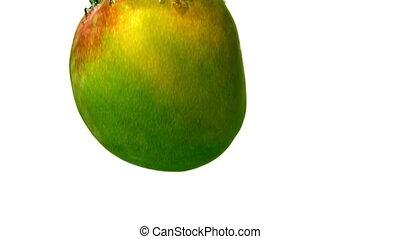 Mango falling in water on white ba - Mango falling in water...