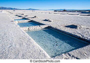 Salinas Grandes on Argentina Andes is a salt desert in the...