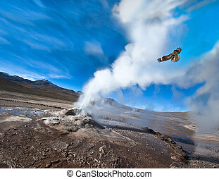 Valley of Geysers in the Atacama Desert - Chile. Valley of...
