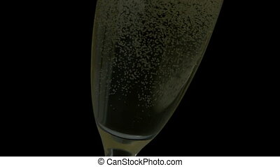 Bubbles rising in champagne glass