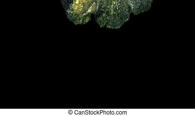 Broccoli florets falling in water on black background in...