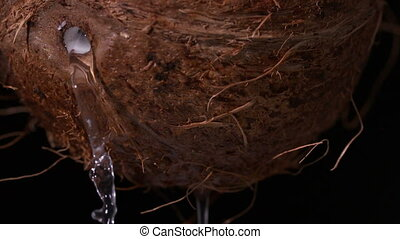 Water leaking out of coconut on black background in slow...