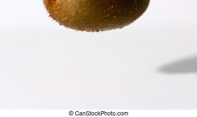 Kiwi falling on wet white background in slow motion