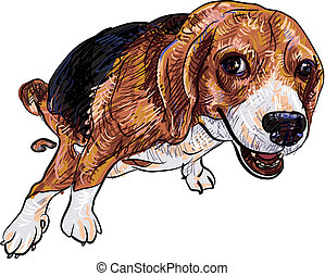Pooping beagle - Cute beagle pooping with funny pose and eye...