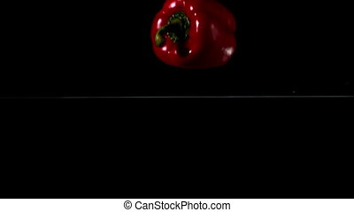 Red pepper falling in water on blac