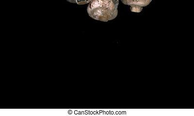 Mushrooms falling in water on black