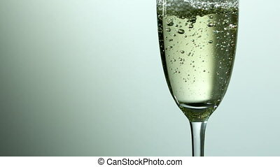 Bubbles rising in champagne glass in slow motion