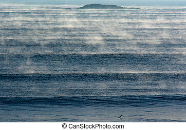 Seascape of fog over cold sea waves in early winter morning.