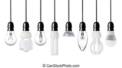light bulbs - Set of different light bulbs isolated on white
