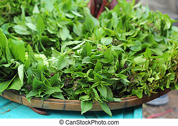 Holy basil in the market