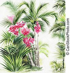 palma, bambu, oásis