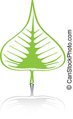 Bodhi Sacred Fig leaf Vector Illustration