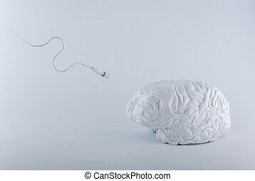 Birth of ideas in human brain.