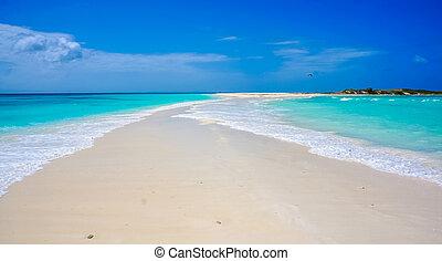 Beach in Caribbean with a sandbank