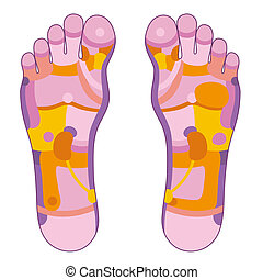 Foot reflexology pink - Foot reflexology illustration with...
