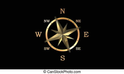 Wind rose compass with spinning pointers