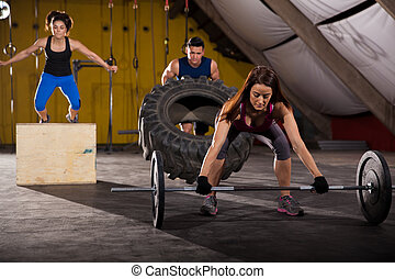 Cross-training in a gym - Working out by lifting weights,...