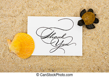 Thank You Card - A shell and a turtle sitting on a thank you...