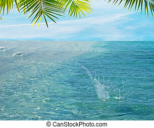 water splash in a tropical beach