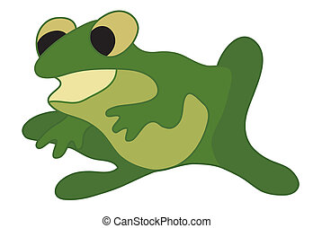 vector illustration of green frog