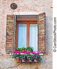 flowers and window