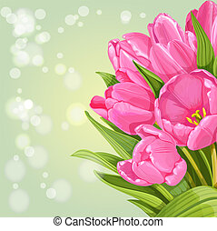 Background of pink tulips