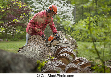 Cutting wood - A man is using an orange chainsaw to cut a...