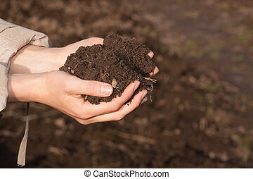 hands with soil - female hands with black soil