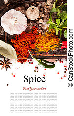 Various spices isolated on white background - Studio shot of...